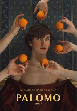 Portada del libro Palomo Spain
